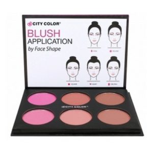 f00799718646 300x300 - 1pc City Color Glow Pro Blush Palette Matte Collection #C0012A (Matte)